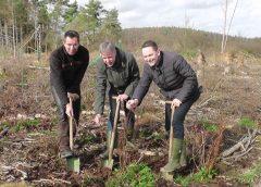 Der Mischwald von morgen- Pflanzaktion in Frankenau