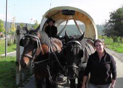 Planwagen-Erlebnisfahrt in die Archeregion Kellerwald