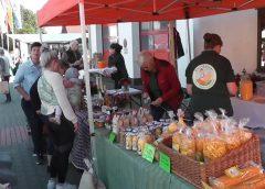 Öko- und Genussmarkt in Meineringhausen lockte viele Besucher